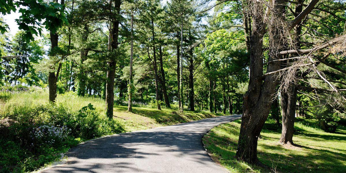 HCM.Driveway.Reiner-slide