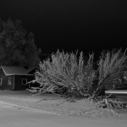 black and white image of a winter night - snowy road, tree and house