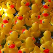 rubber ducky toys
