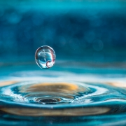 droplet of water bouncing out of water with circular pattern resulting