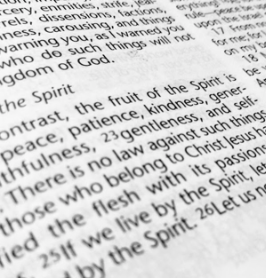 picture of fruits of the spirit passage from the book of Galatians in the Christian Bible
