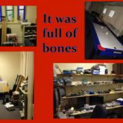 dry bones1